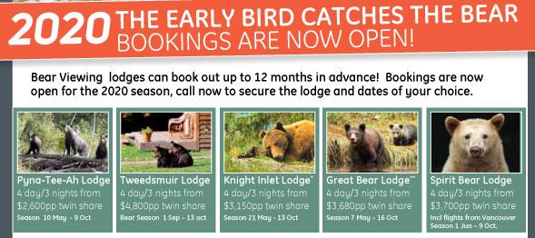 2020 Bear viewing season now open